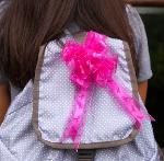 Click here for more information about Small Pink Bow